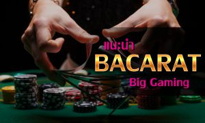 วิธีเล่นบาคาร่า ค่าย BIG GAMING